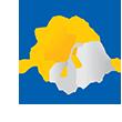 Main logotipo casas andre luiz oficial 110x110px